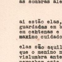 """Extraído do livro """"A Aleatória"""""""