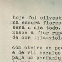 """Extraído do livro """"Mônada"""""""